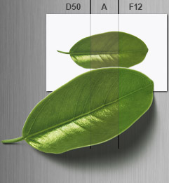 Effect of different light sources on leaf and print